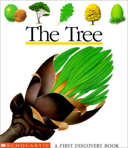 Image for The Tree (First Discovery Books)